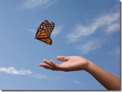 gi-letting-go-butterfly[1]